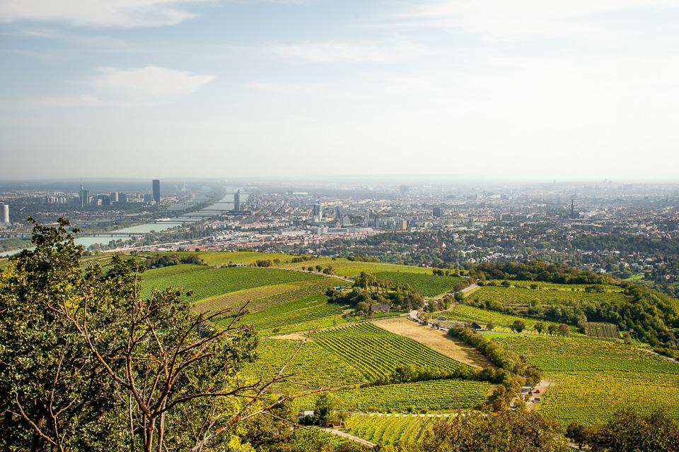 Blick vom Kahlenberg auf Wien